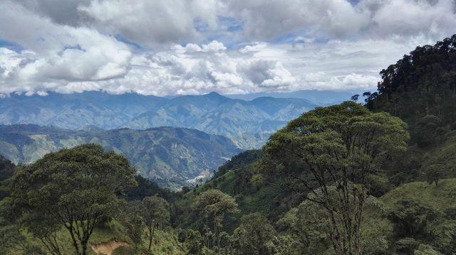 Вид с колумбийской кофейной фермы