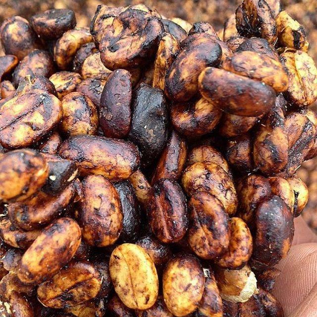 Кофе обработки черный хани имеет богатый вкус, аромат и стоит дороже