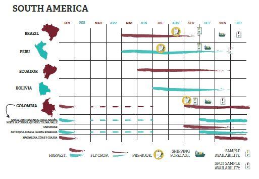 Карта сбора урожая кофе Бразилия Южная Америка © trabocca.com